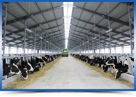 полимерные материалы для животноводства