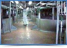 Гидроизоляция для бетона глубокого действия